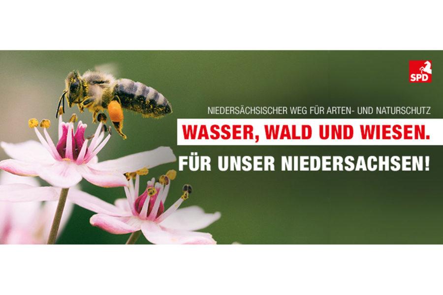 Das Bild zeigt eine Biene als Symbol für den Arten- und Naturschutz